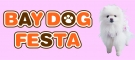 �yBAY DOG FESTA�zHarness Dog�H�~�V�씭�\��h�b�O�t�@�b�V�����V���[